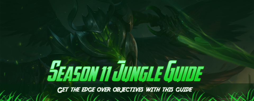 jungle_banner.png